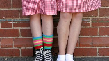 More than 40 per cent of students in year 10 thought cotton came from an animal.