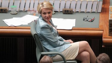 """""""Nasty surprise"""": Tanya Plibersek didn't hold back responding to the announcements made by the Department of Family and Community Services."""