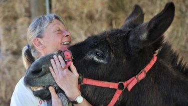 It's a donkey's life at Tongala, where unwanted, abused and rescued donkeys get a second chance at life, thanks to refuge owner Dr May Dodd.