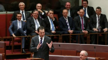 Senator Matthew Canavan delivers his first speech. Photo: Alex Ellinghausen