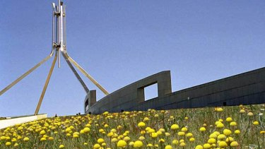 Going native ... how Parliament House might look covered in native flowers.