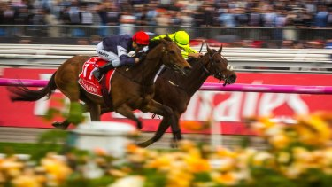 Melbourne Cup Day is the biggest gambling day on the Australian calendar.