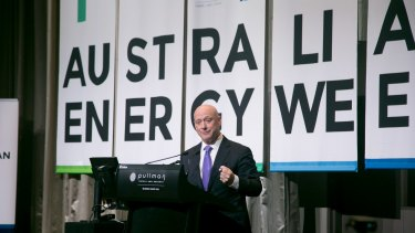 "AGL chief Andy Vesey: ""The industry is not going to invest in things that don't make sense."""