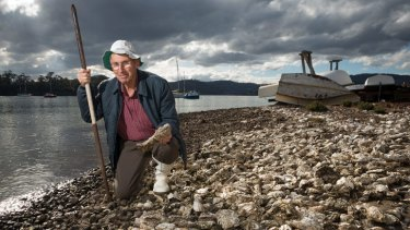 Lindsay James has spearheaded the campaign to rid Tasmania's shores of the feral Pacific Oyster.