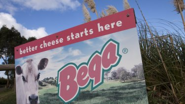 Bega Cheese is tipping farm gate milk prices to rise next financial year.