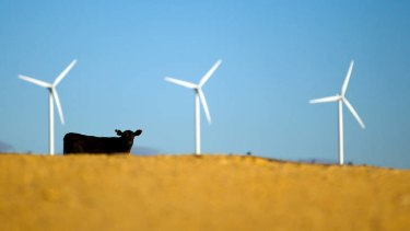 Wind power investment could be decimated if the carbon tax is abolished, say new resaerch.