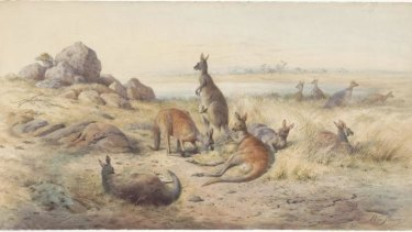 <i>The Haunt of the Kangaroo</i>, 1885 watercolour; William Strutt. Rex Nan Kivell Collection, National Library of Australia.