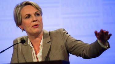 Medicare Locals will not be safe under a Coalition government, Tanya Plibersek says.
