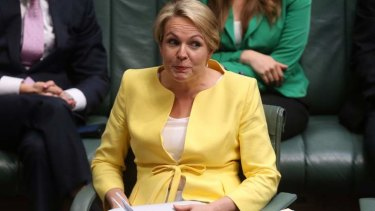 Acting Opposition Leader Tanya Plibersek. Photo: Andrew Meares