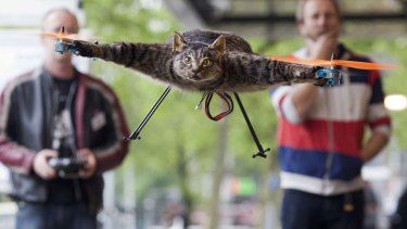 Jansen said the Orvillecopter is part of a visual art project which pays tribute to his cat Orville, by making it fly after it was killed by a car.