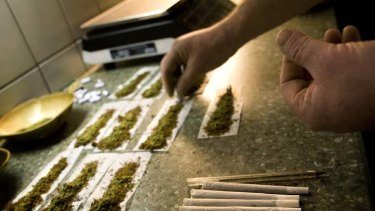 Smoked out … marijuana use increased after decriminalisation.