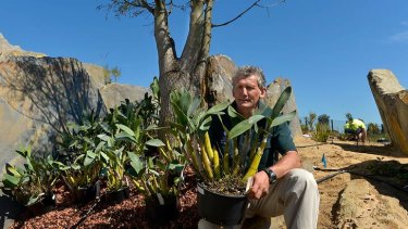 John Arnott hopes the new garden will inspire visitors to embrace Australia's distinctive flora.