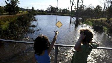 Green belt … feeding ducks at the Parklands.