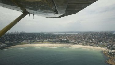 """""""Inefficient and expensive"""": An aircraft patrols for sharks over Bondi beach."""