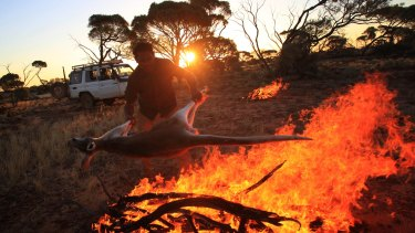 Desert Stars bassist Justin Currie throws a freshly hunted kangaroo on to the fire.