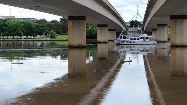 Potentially fatal ... Lake Burley Griffin has been closed due to record high levels of blue-green algae.