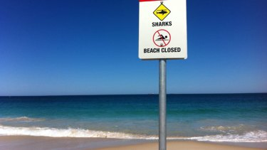 A sign advising of a beach closure after a shark sighting.