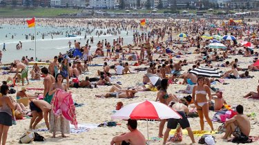 Enough exposure: The summer crowds at Bondi Beach get their hit of vitamin D.