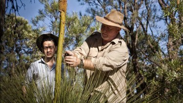 Bush tucker man … Bob Cooper shows Ben Law how to live off the land.