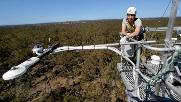 Complex: Monash University's Ian McHugh checks monitoring equipment high above the dry eucalypt forests behind Nagambie.