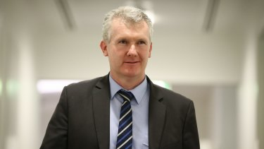 Labor tactical chief Tony Burke.