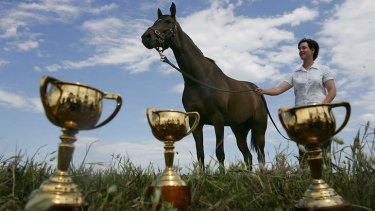 Big shoes to fill: Makybe Diva with the three Melbourne Cups she won between 2003 and 2005.