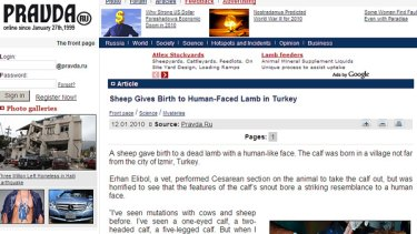 Human-like face ... how the story of the lamb appears on the Pravda website.