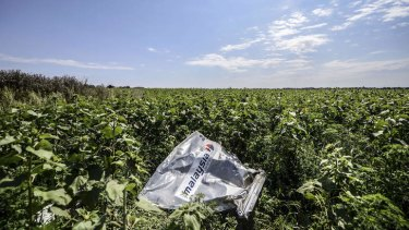 A piece of wreckage of  Malaysia Airlines flight MH17 is pictured in a field near the village of Grabove, in the region of Donetsk.