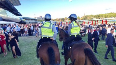 The Australian Turf Club at Randwick has introduced an equine mounted division of former racehorses.