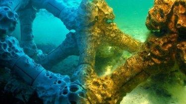 Lego-inspired: Melbourne designer Alex Goad's Modular Artificial Reef Structure.