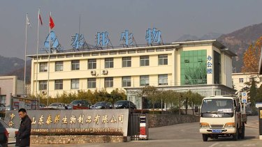 Dr Du's production headquarters at the foot of Mount Tai, Shandong Province.