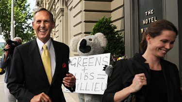 Greens leader Bob Brown, hounded by an inner-city koala who is suspected of voting for Labor.