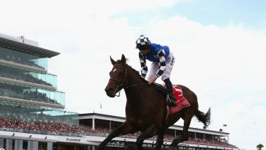 2014 Melbourne Cup winner Protectionist