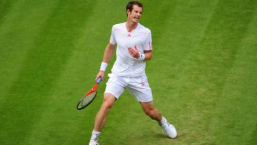 Splits opinion ... Andy Murray.