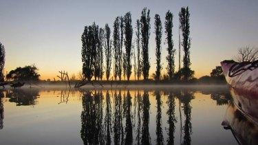 5:30am: A bit of magic on the Molonglo this morning.