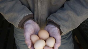 New definition of free-range eggs could be delayed, pending public comment.