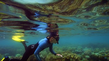 The Great Barrier Reef is under threat from climate change.