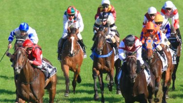 Not your usual breeding story … Laser Hawk, far left, a great chance in today's Australian Derby at Randwick, was one of few good stories to emerge from the 2007 EI crisis.