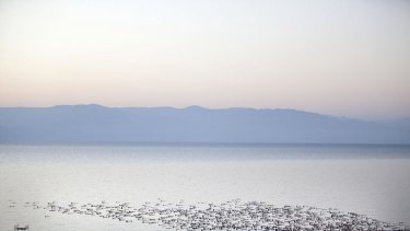 For art's sake … hundreds of naked people make their way into the Dead Sea as part of a new photographic shoot by the photographer Spencer Tunick.