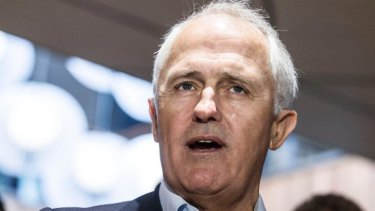 Richard McLelland, the secretary of the Australian Community Television Alliance says Malcolm Turnbull (pictured) may have 'pulled the wrong rein.'