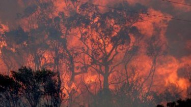 Bushfire seasons are predicted to worsen with climate change.