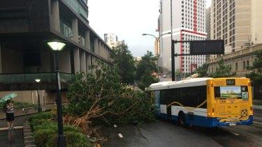 Violent storm lashes Brisbane on Thursday, November 27.