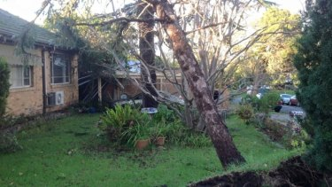 A fallen tree in Malvern after Sundays storms. Worse is to come on Tuesday, forecasters say.