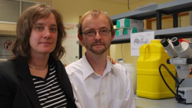 Dr Barbara Baer and Professor Boris Baer at their University of Western Australia lab.