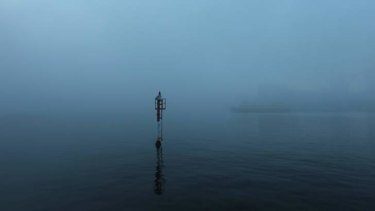 A thick fog envelopes Sydney Harbour on Mother's Day.