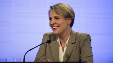 """It's quite extraordinary that [the government] would make a large change without reporting back to Australians"": Opposition foreign affairs spokeswoman, Tanya Plibersek."