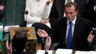 Climate Change Minister Greg Combet and Opposition Leader Tony Abbott gesture to each other during Question Time on Tuesday.