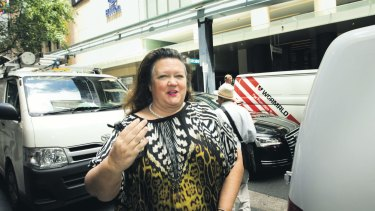 Gina Rinehart picked up shares in 2010.