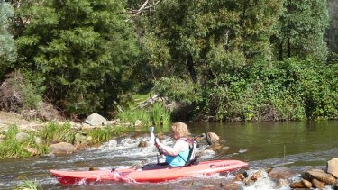 Micalong creek provides safe and fun paddling.