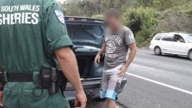 Stung... a NSW Fisheries officer stops a car allegedly carrying illegal abalone at Burrill Lake.